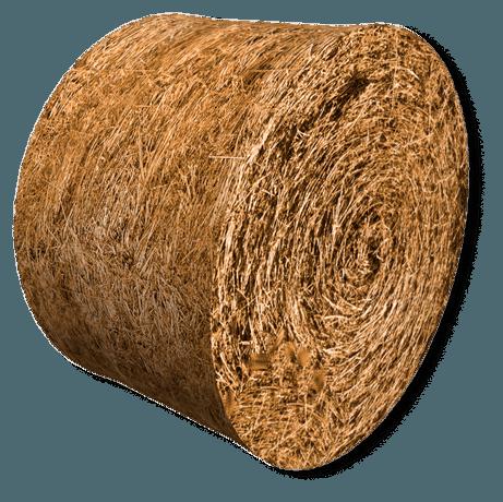 Защита кормов: как уменьшить потери