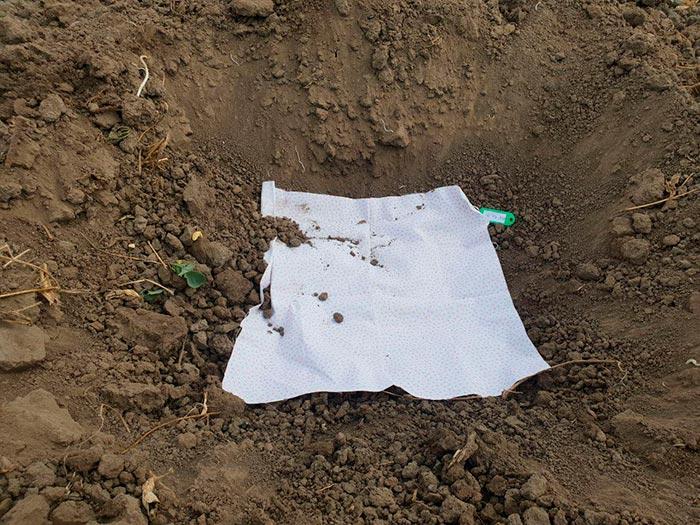 индикатор проверка почвы 1
