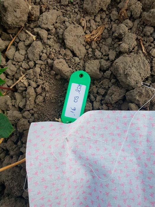 индикатор проверка почвы